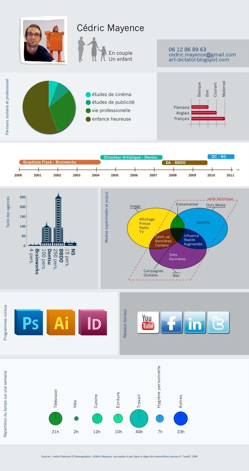 votre cv en infographie avec vizualize me